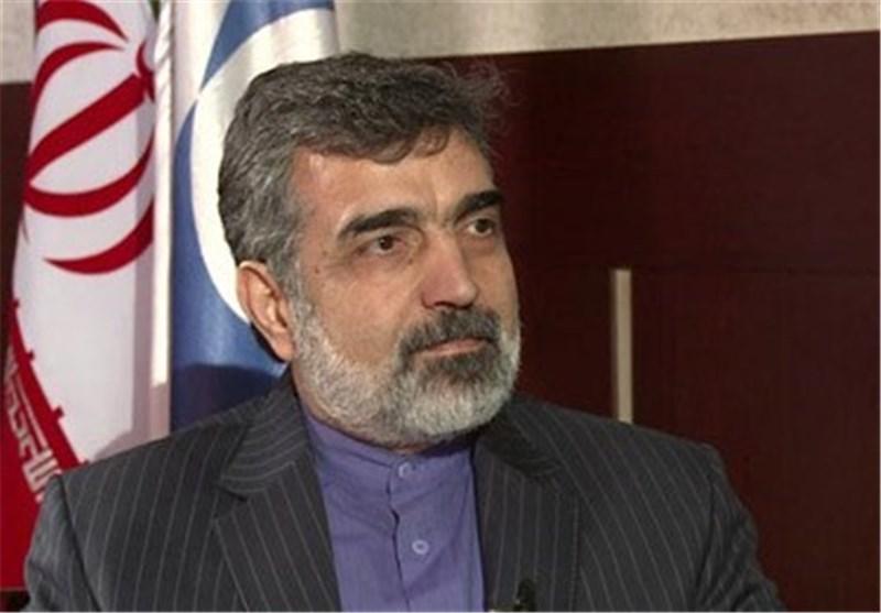 كمالوندي: لن ينشأ مكتب الضمانات في ايران