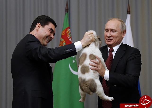 بالصور و الفيديو: رئيس تركمانستان يهدي بوتين