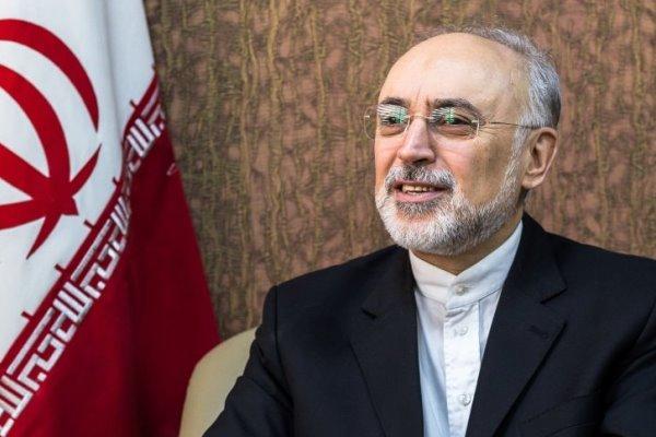 صالحي: اميركا تريد تقويض الاتفاق النووي على حساب ايران