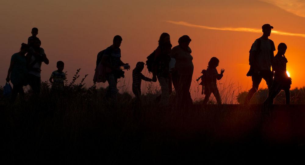 الأمم المتحدة: أكثر من 258 مليون مهاجر في العالم