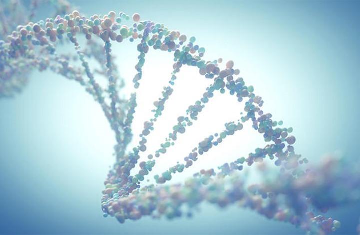 ما الأمراض الخطيرة الخمسة التي تنتقل عبر الجينات؟