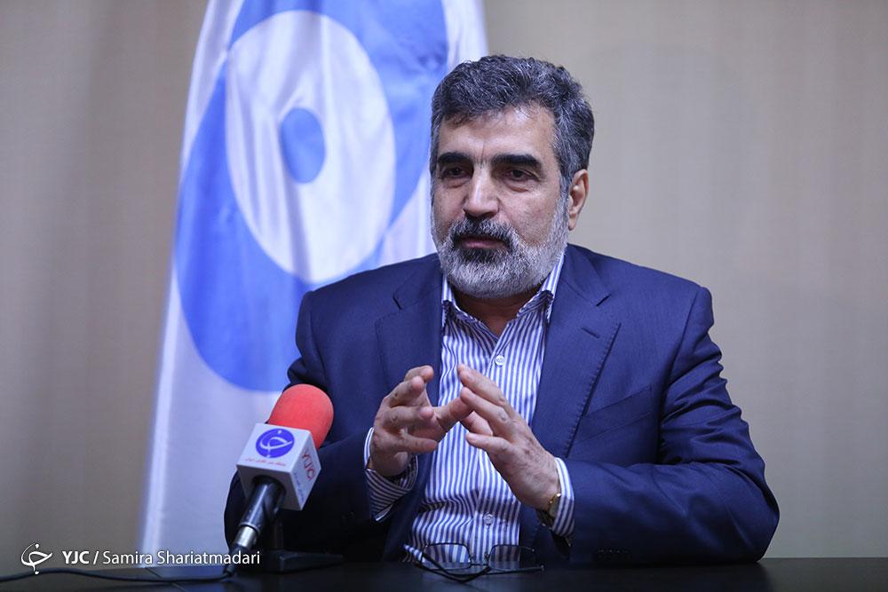 كمالوندي: ايران في المرحلة النهائية للعضوية في مشروع