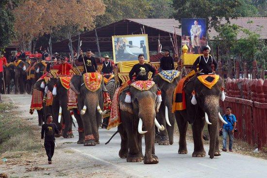 تايلاند تحتفل باليوم الوطني للفيل