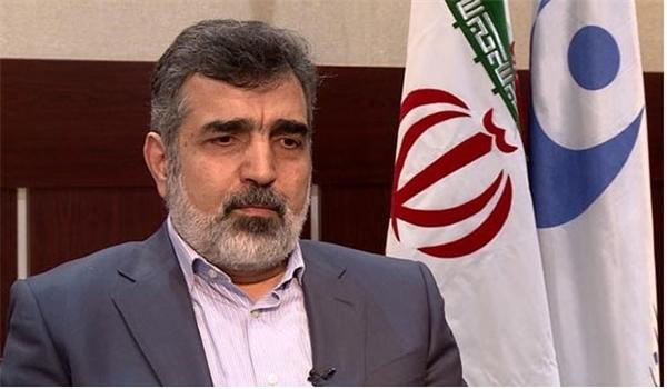 كمالوندي: ايران قادرة على انتاج وقود المحطات النووية في غضون 10 أعوام