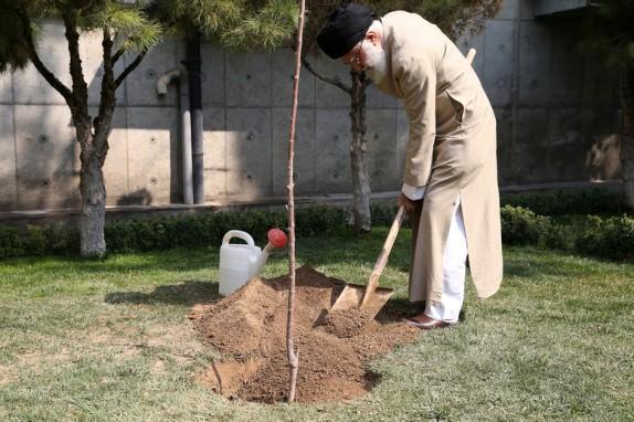 قائد الثورة الاسلامية يغرس شتلتين من اشجار الفاكهة