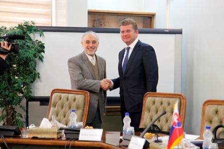 صالحي ووزير الاقتصاد السلوفاكي يبحثان التعاون في المجال النووي
