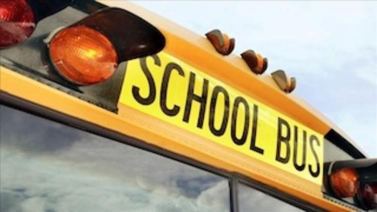مقتل 20 طفلا في اصطدام حافلة تقل تلاميذ بسيارة شحن في جنوب إفريقيا