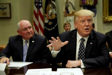 ترامب يبحث تأثير نقل السفارة الأمريكية في إسرائيل على عملية السلام