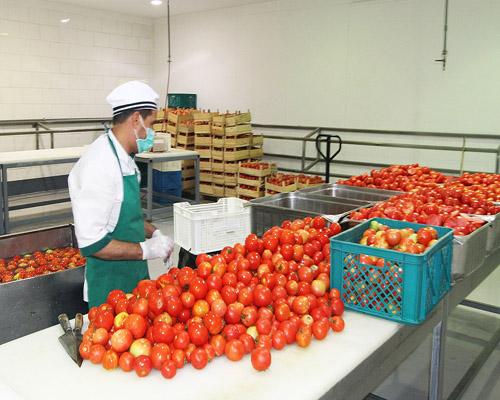 المطبخ الإيراني في مكة المكرمة يقدم خدماته لـ86 ألف حاج+ الصور