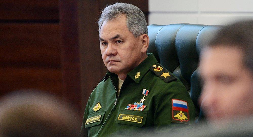 شويغو: روسيا تتفاوض مع دول في الشرق الأوسط لبيع صواريخ إس-400