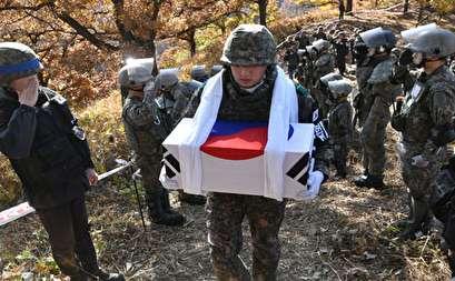 صور.. كوريا الجنوبية تزيل الألغام فى منطقة حدودية مع جارتها الشمالية