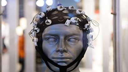 العلماء يحفظون الذاكرة بعد الموت!