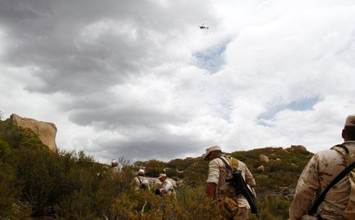 صور.. السلطات المكسيكية تحرق نبات الماريجوانا فى بلدية إنسينادا