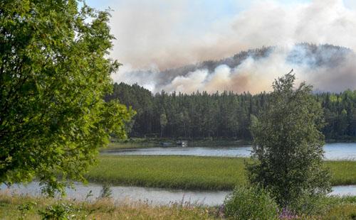 بالصور حرائق تجتاح عدة غابات بالسويد والسلطات تناشد السكان بإغلاق النوافذ