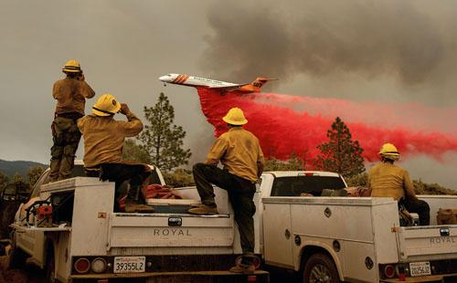 صور.. فرق الإطفاء تكافح حرائق الغابات فى ولاية كاليفورنيا الأمريكية