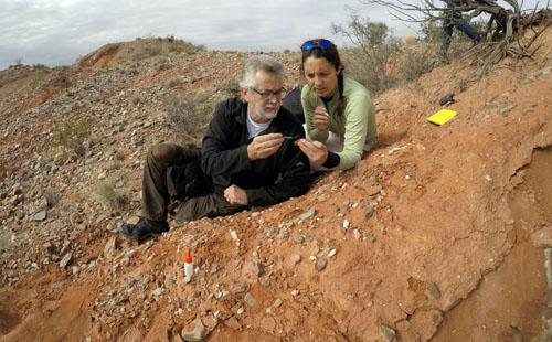 صور.. اكتشاف على حفرية لأقدم ديناصور عملاق على وجه الأرض