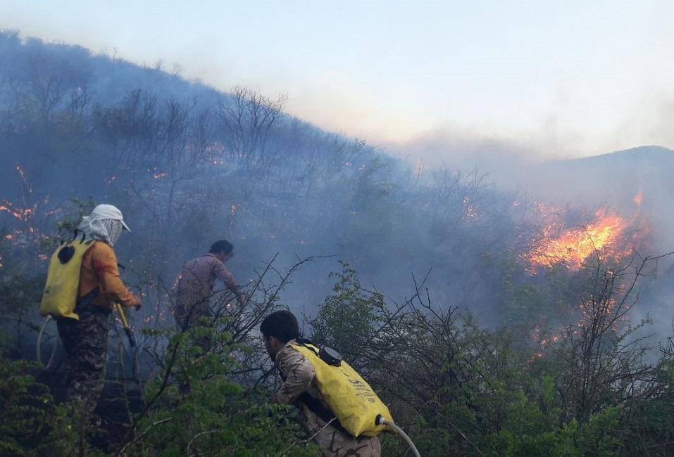 النيران تلتهم مايزيد عن 300 هكتار من أراضي حديقة «جُلِستان» الوطنية