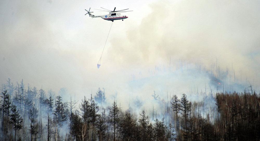 ارتفاع عدد قتلى حرائق غابات كاليفورنيا الأمريكية
