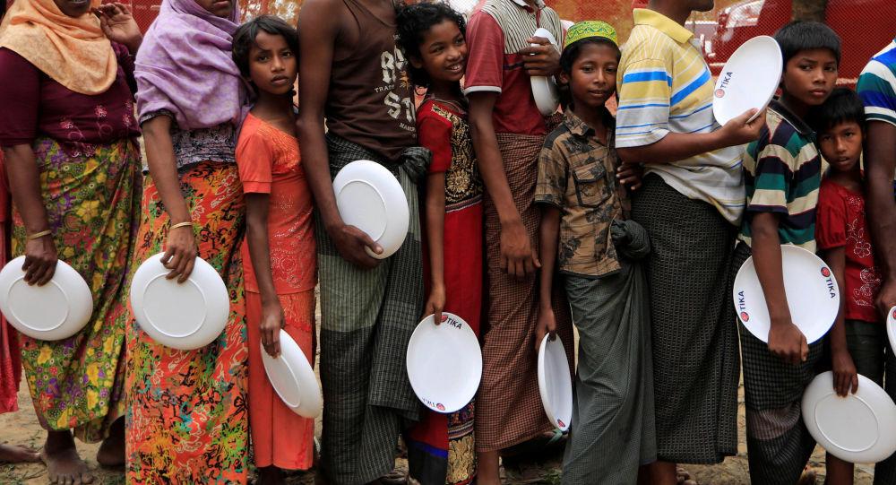 حكومة ميانمار تنشىء لجنة للتحقيق في أوضاع الروهينغا