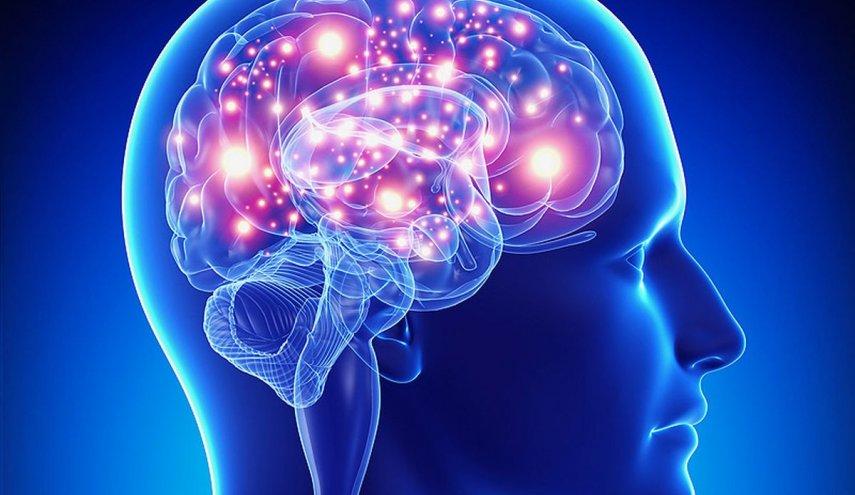 اكتشاف مهم: دائرتان في المخ ترتبطان بالأفكار الانتحارية