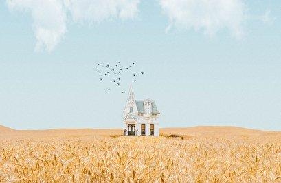 """""""أصغر بيت في العالم"""" أصغر من شعرة رأس (شاهد)"""