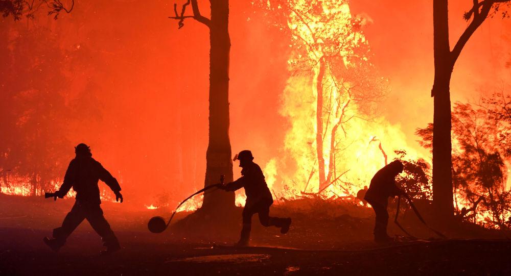 فرق الإطفاء بأستراليا تسعى لاحتواء حرائق الغابات قبل موجة حارة