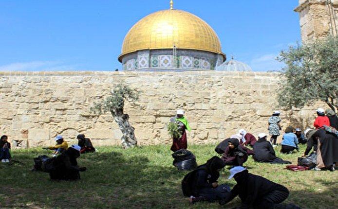 القدس أولا.. حملة تنظيف الأقصى لاستقبال رمضان