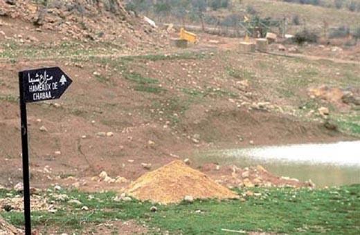 جيش الاحتلال يخطف راعيين في مزارع شبعا