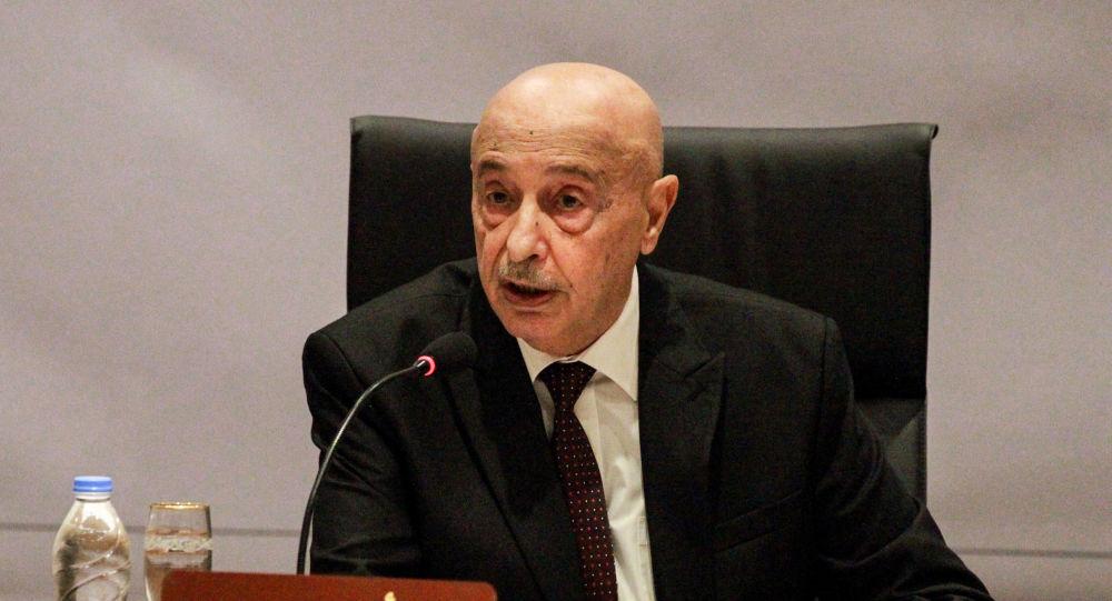 رئيس برلمان ليبيا يتهم أردوغان بإحياء إرث الظلم العثماني ويطالب الدول العربية بالتدخل