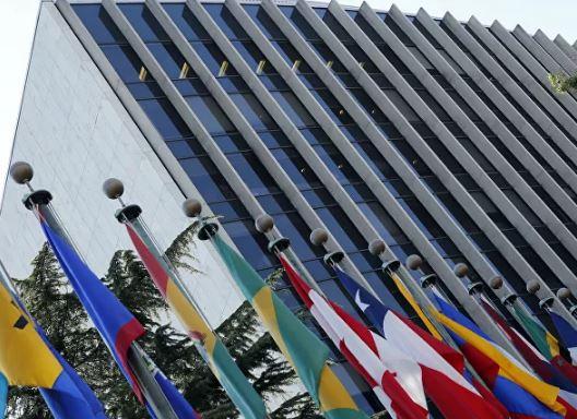 منظمة الصحة العالمية تحسم علاقة انتشار