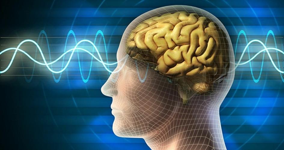 العلماء يتوصلون إلى تحديد مكان الإجهاد في الدماغ