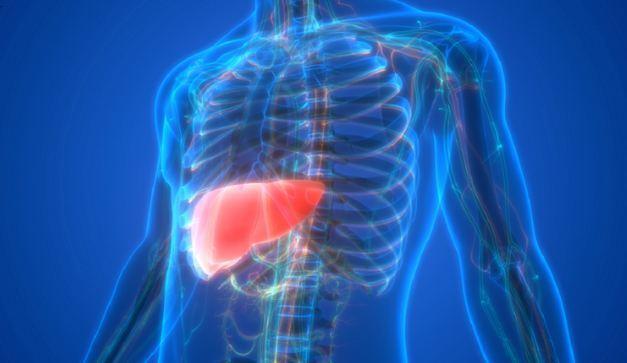 7 أعراض لمرض الكبد الدهني يمكن الخلط بينها وبين