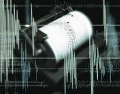 Strong quake hits Costa Rica, no reports of major damage