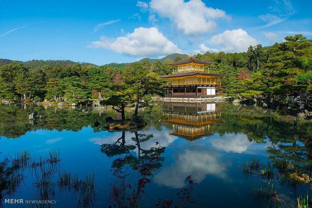 World most beautiful shrines