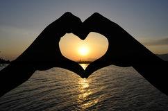 Heart in Imam Ali's view