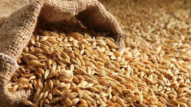 US fears hamper Iran's animal feed imports