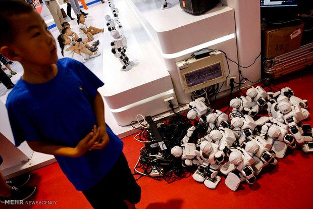 China World Robot Conference