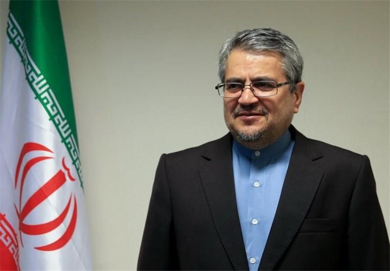 Iran envoy says Muslim countries to establish contact group on Rohingya crisis