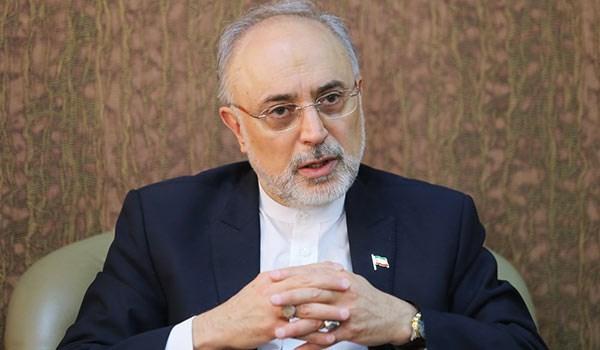 AEOI Chief Warns EU Not to Follow US in JCPOA Violation