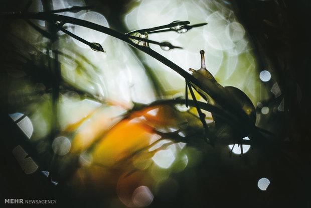 International outdoor photography