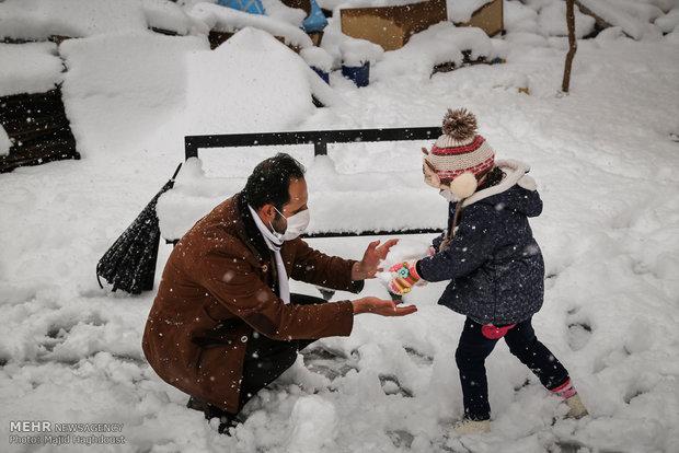 Snowy day in capital Tehran