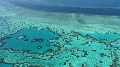 Global warming harming marine life: Studies