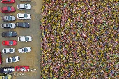 Bike graves in China