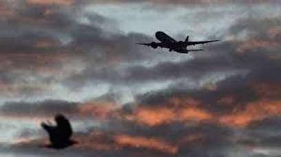 U.N. agency urges mandatory training to combat human trafficking on flights