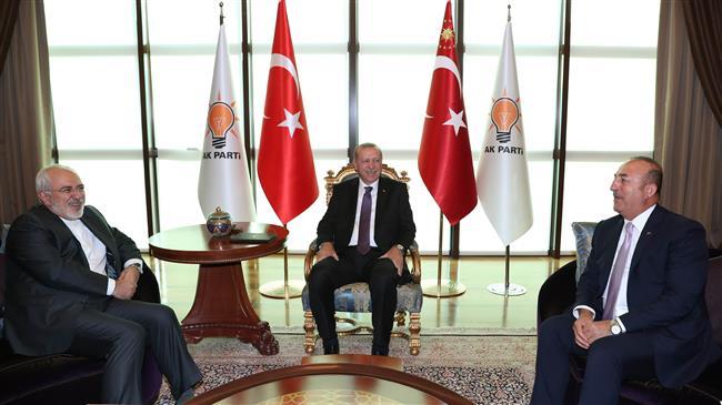 Washington's pressure will bring countries together: Zarif