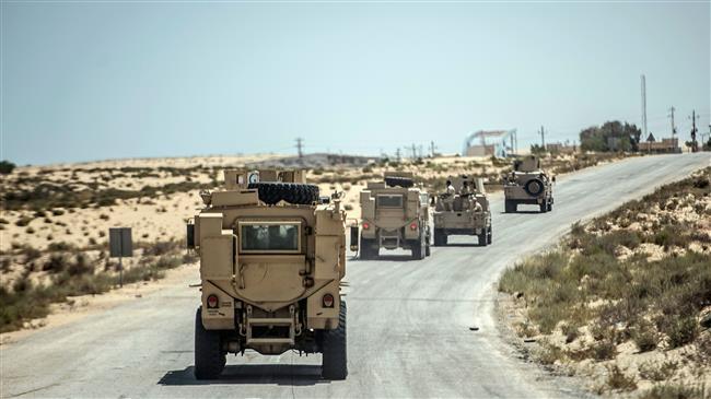 Egypt's military kills 52 militants in Sinai