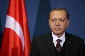 Turkey's president to meet Merkel in Germany next month