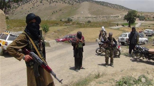 Taliban deny meeting Afghan officials in Saudi Arabia ahead of elections