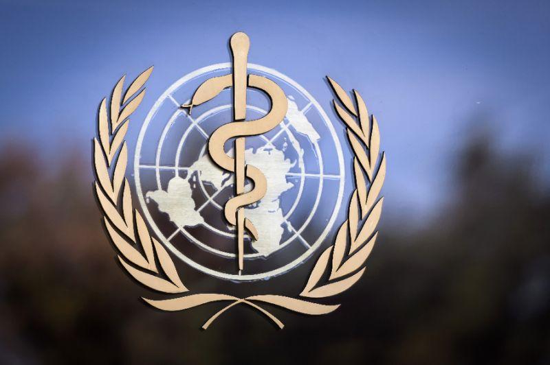 Cholera kills 14 in NE Nigeria: official