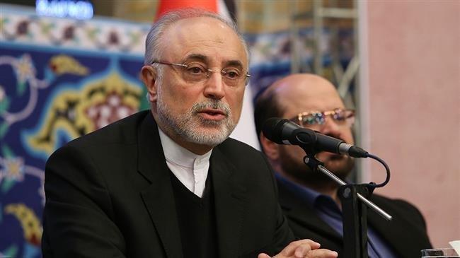 Iran holds international conference on Gaza resistance